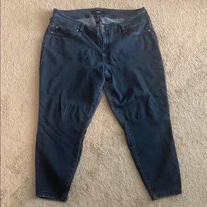 Torrid Jeans 22S